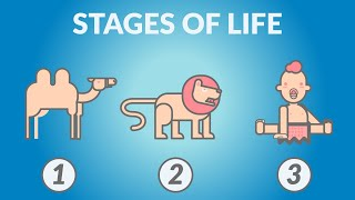 Nietzsche — The 3 Stages of Life