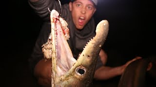 Freakish Saltwater Fishing (caught using hand reels)