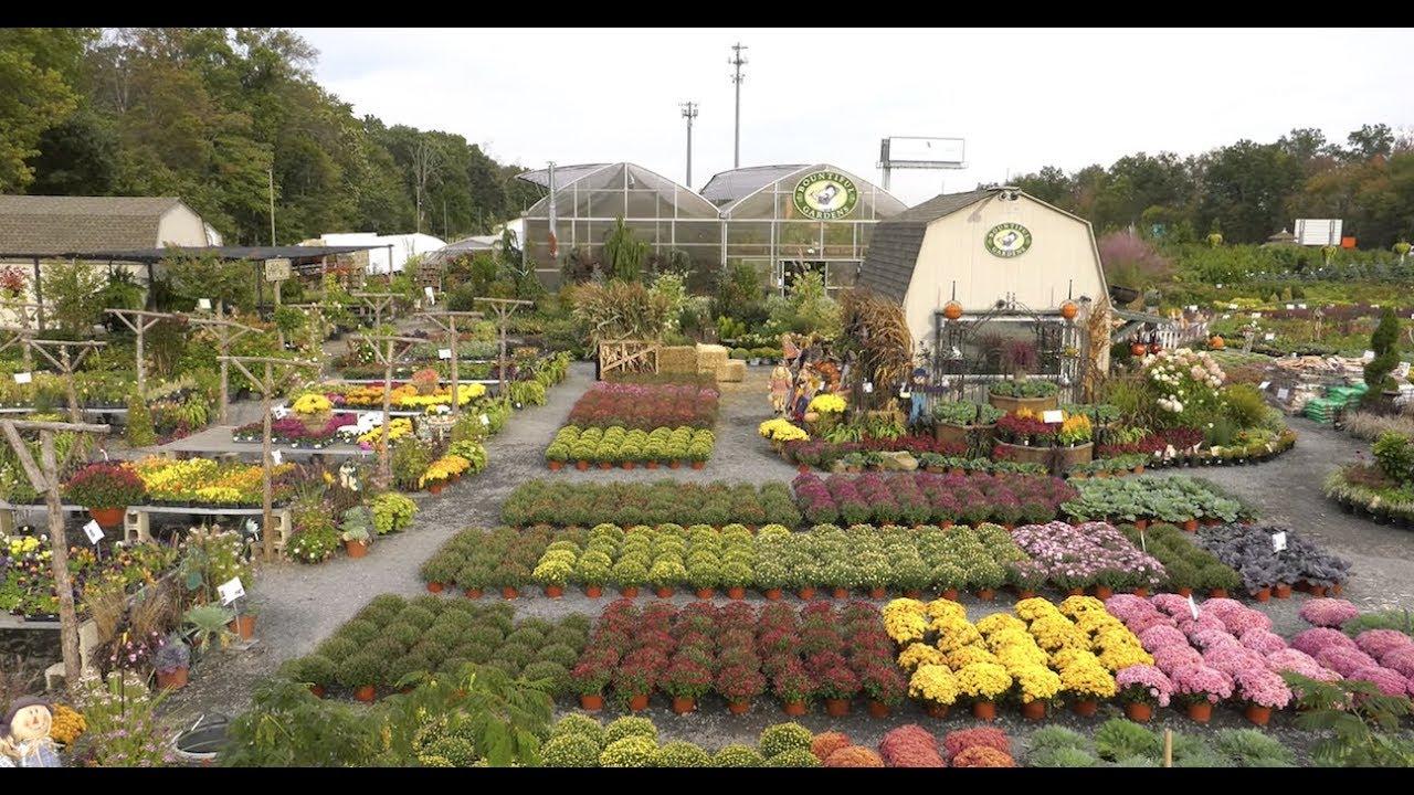 VIRTUAL TOUR of Spectacular Garden Center and Greenhouse: Bountiful ...