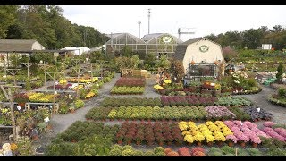 VIRTUAL TOUR of Spectacular Garden Center and Greenhouse: Bountiful Gardens in Ewing!
