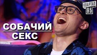 Шоу Квартала 95 - Собачий Секс | Юмор, Новые приколы 2018
