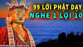 99 Lời Phật Dạy Nghe 1 Lợi 10 nên Nghe Vào Mỗi Tối Để Ngủ Cực Ngon Tiêu Tan Phiền Muộn Cuộc Sống