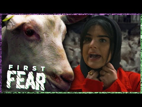 FAMKE LOUISE AANGEVALLEN door 200 GEITEN | FIRST FEAR
