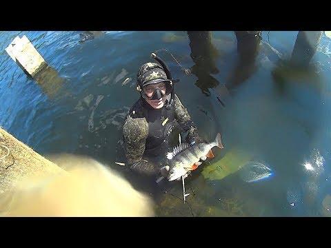 Подводная охота река Сейм