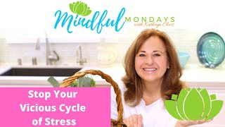 How to Stop YOUR Vicious Cycle of Stress