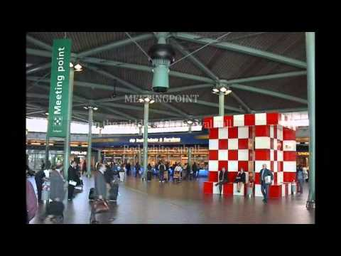 Business Taxi Amsterdam Schiphol arrival service