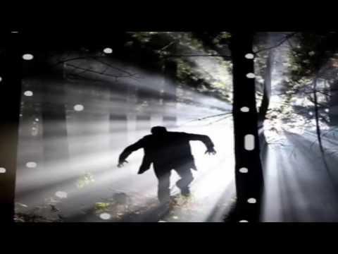 NEWO Dick Gregory  2017 Reveals terrifying secrets