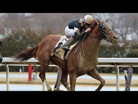 Sir Winston returns with a win in a Allowance at Aqueduct