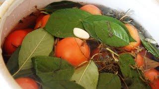 Соленые помидоры в керамическом бочонке или банках