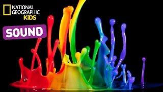 Learn About Sound | Nat Geo Kids Sound Playlist