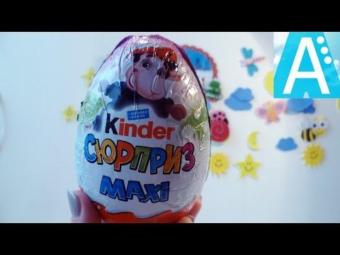 Большой киндер Макси киндер Овечки 2017. Киндер сюрприз Овечки. Kinder Maxi 2017.