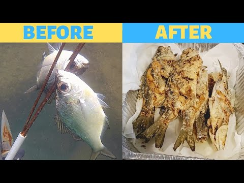 Polespear Catch And Cook:Spearfishing Hawaii
