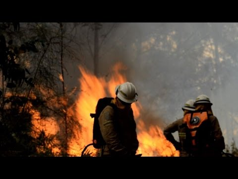 Portuguese firefighters continue to battle forest fires