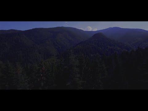 The Fog 2017: The Philosopher's Stone Teaser Trailer