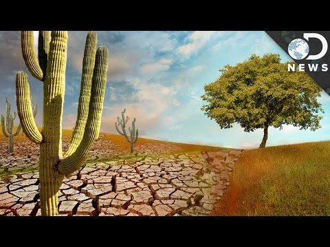Earth's Deserts Are Growing And There's Nothing We Can Do