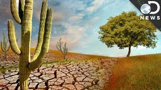Is Earth Turning Into A Big Desert?