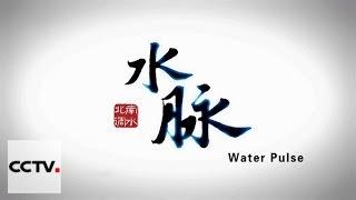 Документальные фильмы: Пульсация воды Серия 5 Дом на чужой земле 2