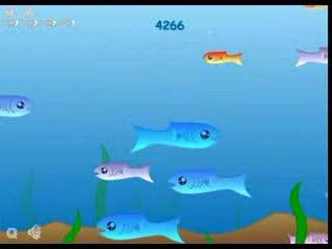 Image result for fishy game