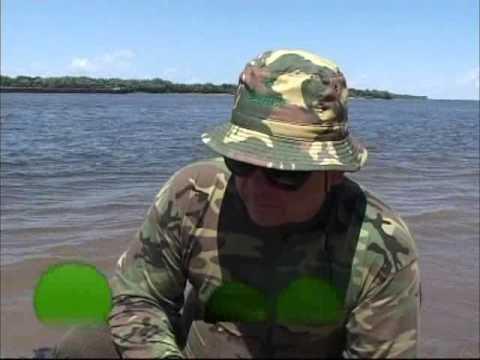 рыбалка на сазана астраханской области
