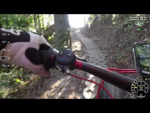 Blue Trails at Balm Boyette Scrub Preserve (Florida)
