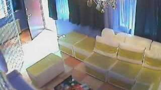 Asa A Fost Jefuita Regina Porno - Alina Plugaru