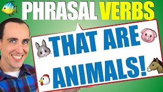 5 Phrasal Verbs That Are Animals 🐔 Speak Advanced English