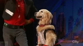 America's Got Talent 2016 Jose & Carrie A Man & His Dancing Partner Dog Full Audition Clip S11E01