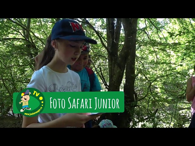Foto Safari Junior (intro)