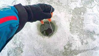 Опустил простую блесну, а ОНА КЛЮНУЛА С УДАРОМ И НАЧАЛАСЬ БОРЬБА!.. первый лед малых рек