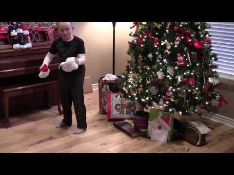 Boy Gets Coal, Rips Off Stuffed Animal Head and Pulls Down Christmas Tree!