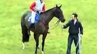 accident de cheval