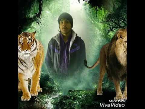tiger 47 sohali