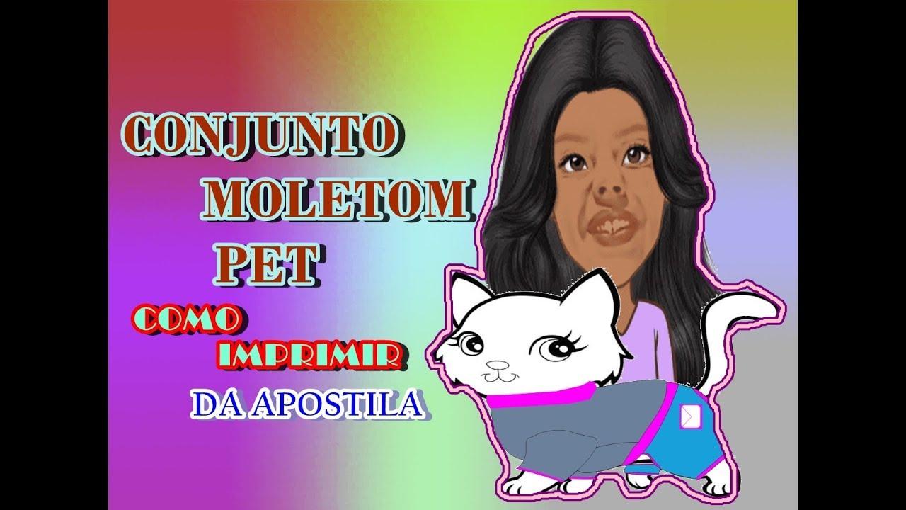 CONJUNTO MOLETOM PET, COMO IMPRIMIR DA APOSTILA