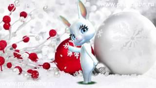 Дорогая Подруга С Новым Годом! Новогоднее поздравление от ZOOBE Зайки Домашней Хозяйки