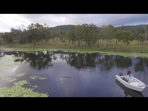 Eungella Dam Fishing