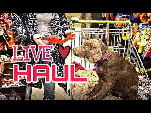 Live Shopping HAUL | Kölle Zoo