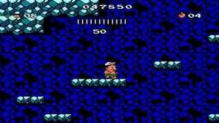 Hudson's Adventure Island 3 Walkthrough