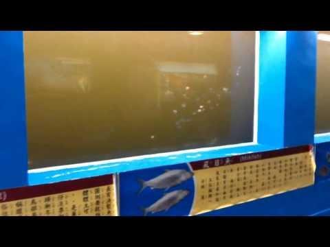 安億橋下河底隧道、台南運河博物館台南一日遊Taiwan travel ...