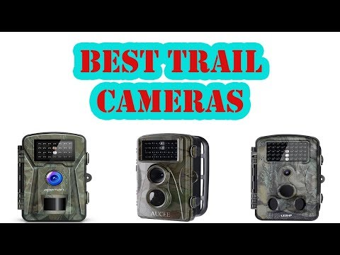 Top 5 Best Trail Cameras Review 2018
