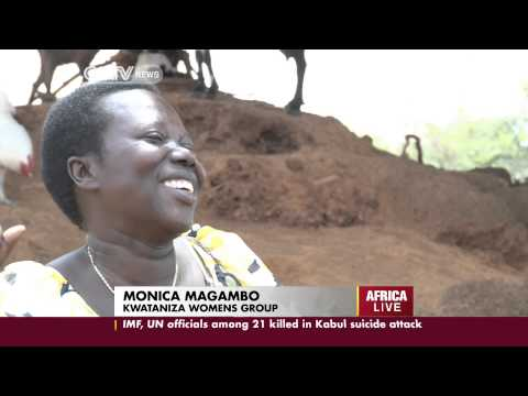 Uganda: Women take to goat -rearing to provide a source of income for their families