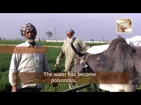 video punjab land
