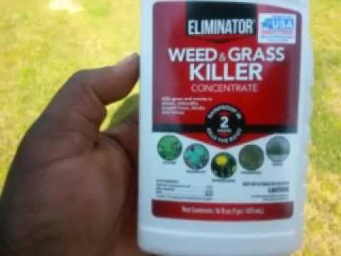 Eliminator Weed And Grass Killer Review Youtube