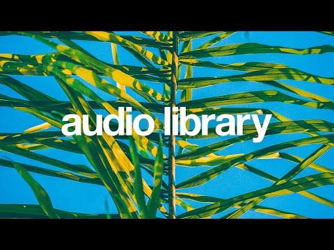 Tropical Sensation - Mike Leite [Vlog No Copyright Music]