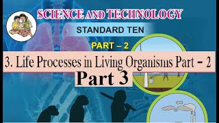 3.Life Processes in Living Organisms 2 Pt 3. 10th Science 2 Maharashtra Board