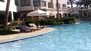 Бассейн в отеле. Шарм-Эль-Шейх(, 2015-08-05T19:12:52.000Z)