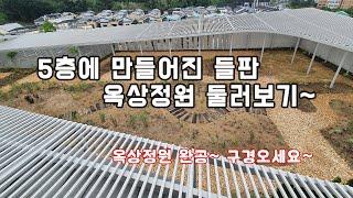 옥상정원 완성~ 우트칩길따라 정원구경하기~ /옥상조경/