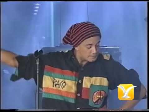 Los Pericos- Runaway  (Festival De Viña 95)