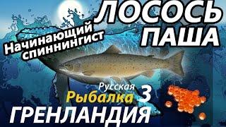 Лосось Паша / РР3 [ Русская рыбалка 3.9 Гренландия].