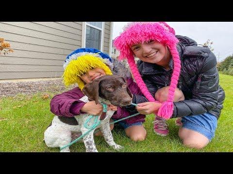 Playing Fetch with New Puppy, Nueva Mascota en la Familia, Family Vlogs