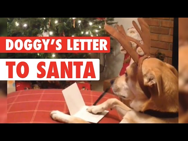 Doggy's Letter to Santa